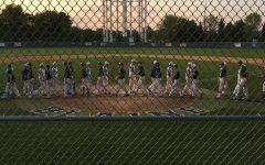 Boys Baseball: Bengals Dominate Pirates 11:0