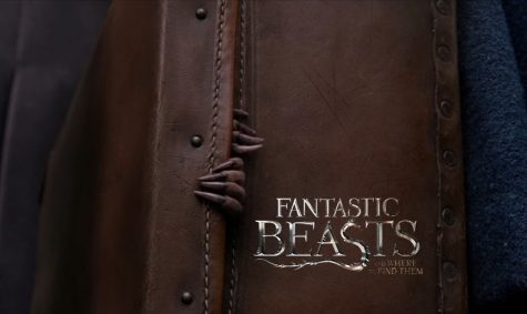 """""""Fantastic Beasts and Where To Find Them"""" is Fantastical and Full of Heart – Movie Review"""