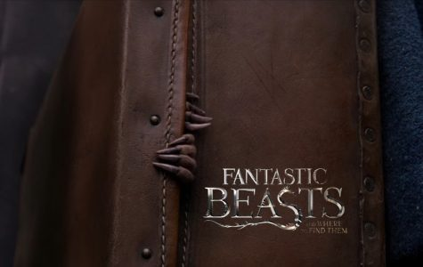 """Fantastic Beasts and Where To Find Them"" is Fantastical and Full of Heart – Movie Review"