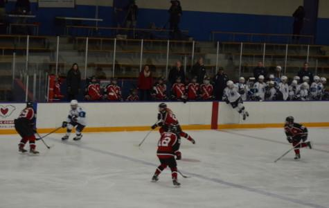 Girls Hockey: Bengals Fall to Rival Cougars 4-2