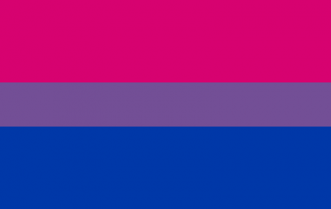 Bisexuality- What is it and why Should we Care?