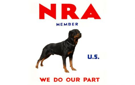 Why I Support the NRA