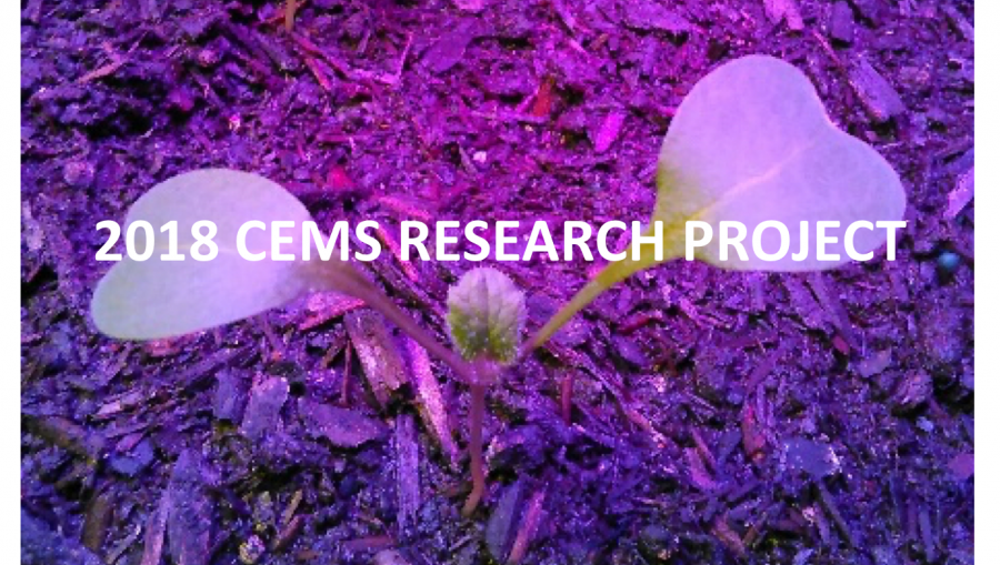 2018 CEMS Research Project: Radishes grown with hydro-mechanical irrigation