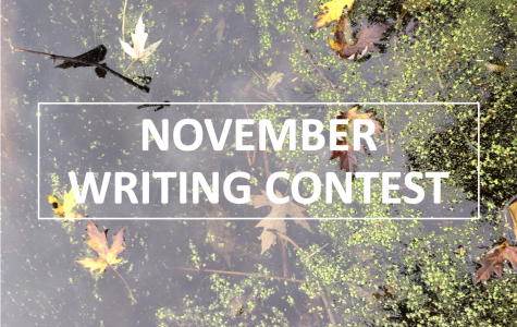 BHS Blueprint Monthly Writing Contest: November 2018