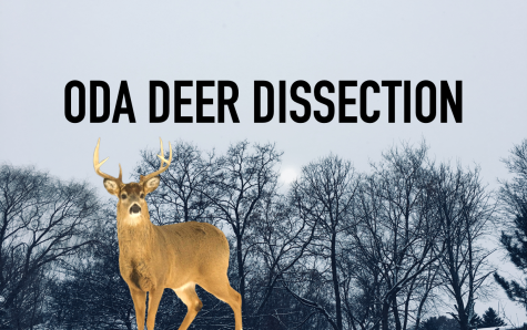 BHS Snapshot: ODA Deer Dissection